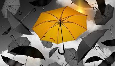 Şemsiye Satmak