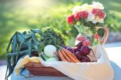Organik Tarım Yapmak