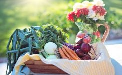 Organik Gıda Ürünleri Dükkanı Açmak