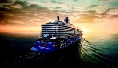 Yolcu Gemilerinde Çalışmak
