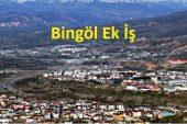 Bingöl'de Evde Ek İş Alanları